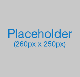 Placeholder-260x250